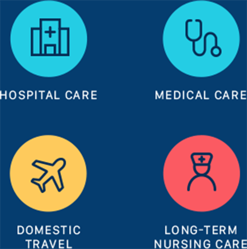Hospital Care, Medical Care, Domestic Travel, Long-Term Nursing Care Mobile