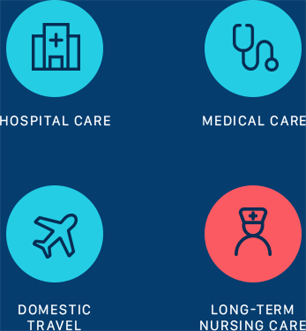 Hospital Care, Medical Care, Domestic Travel, Long-Term Nursing Care Desktop